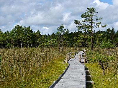 Revitalizing an area through nature-friendly tourism