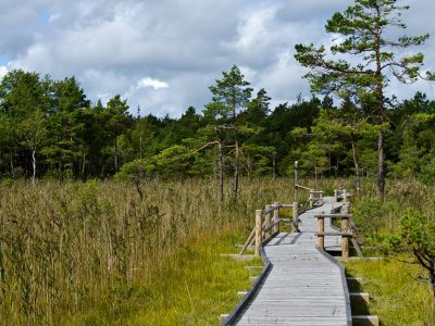 Revitalizing an area through nature-friendly tourism image